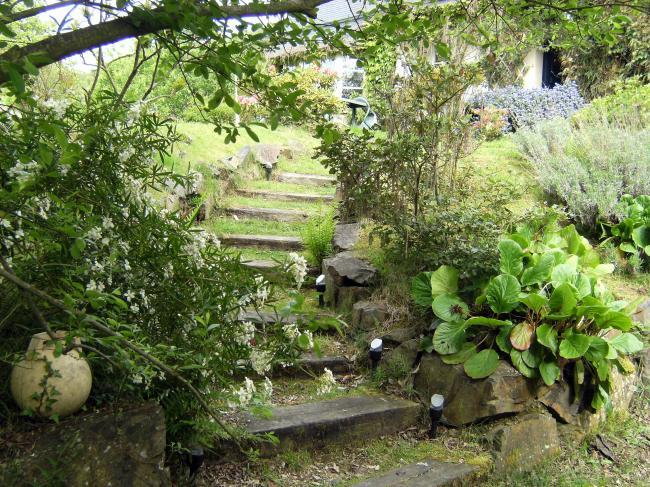 La passiflore location appartement saint jean le thomas - Les jardins de passiflore ...